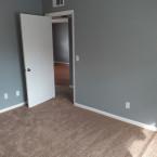 DT-Room-Carpet